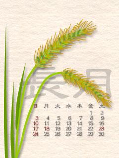 9月カレンダー(ねこじゃらし)